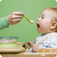 Когда, как и чем прикармливать малыша